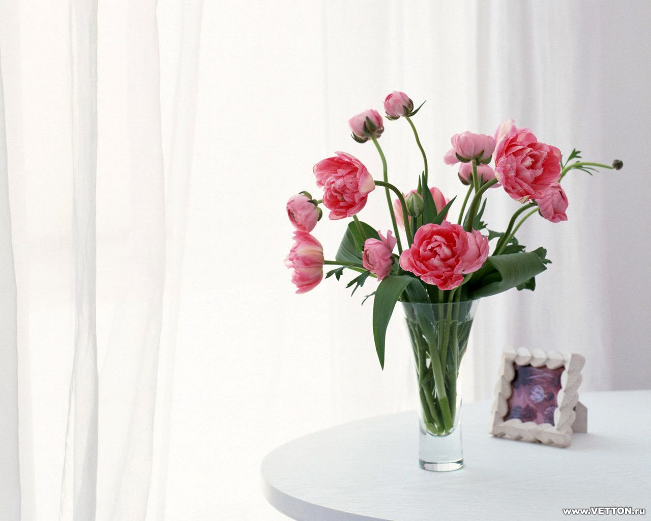 Цветы в вазе фото картинки